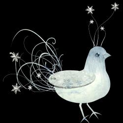 JofiaDevoe-snowbird-sh_499978.th.png