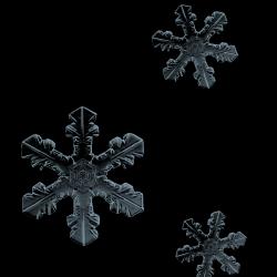 JofiaDevoe-snowflakes-sh_499981.th.png