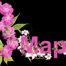 8_MARTA-10.th.png