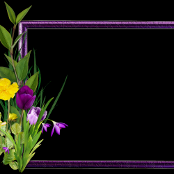 Carena-Sweet-Love-of-Spring-Cluster-2.th.png